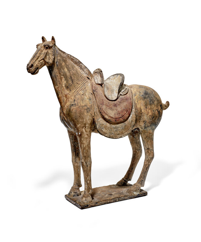 A magnificent large painted grey pottery saddled horse, Early Tang Dynasty, 7th Century