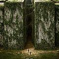 The maze runner - le film