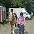 Jeux équestres manchots 2013 (13)
