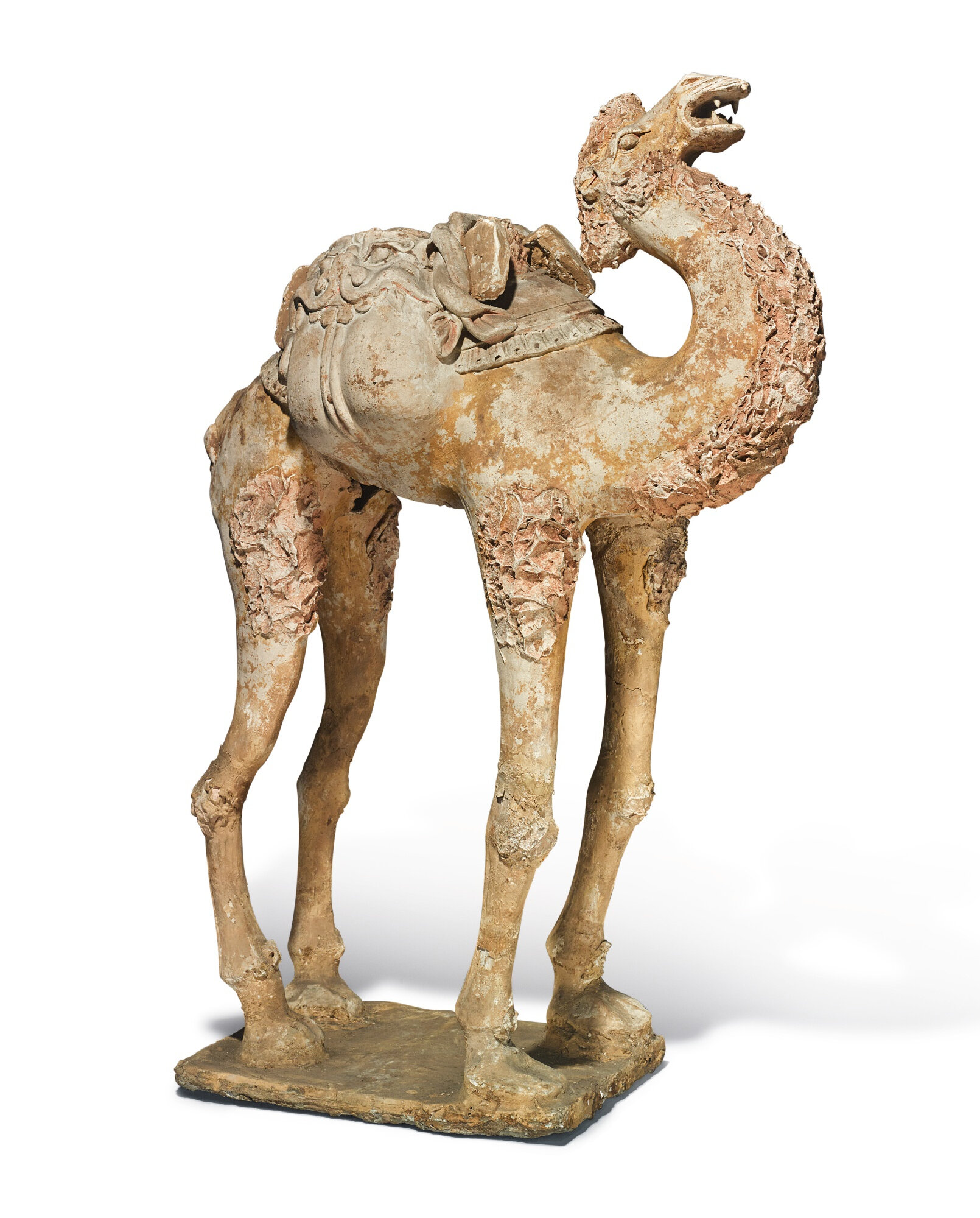 A large painted pottery figure of a camel, Tang dynasty (618-907)