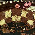 Gâteau damier (thermomix) - marre aux cochons