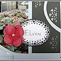 BR14 Elven 015