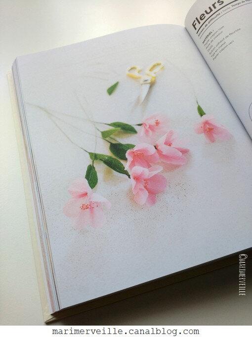 La bible du papier fifi mandirac 4 - Marimerveille