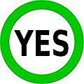 كلنا سنقول نعم للدستور