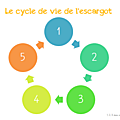 Windows-Live-Writer/Projet-Escargot-Rigolo_D93A/image_42
