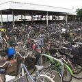6- beaucoup de vélos en Chine