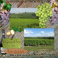 Vignoble bordelais