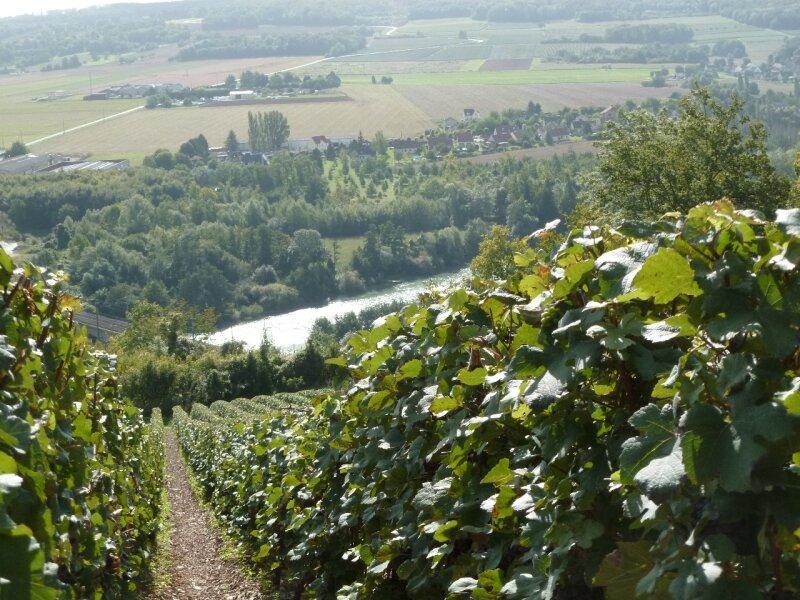 les coteaux de la Marne (27)