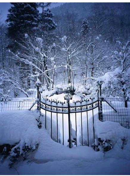 hiver&