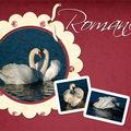 Cygnes_romanceWeb_08-