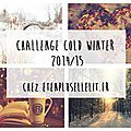 Challenge - cold winter 2014-2015