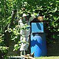 Visites des ruches ms/gs
