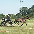 concours 2011 039