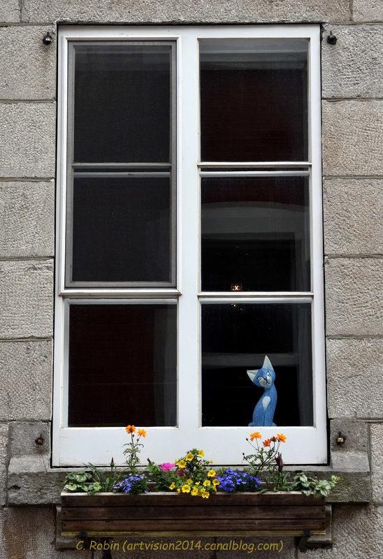 9-Cléo Québec (2)