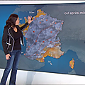 patriciacharbonnier04.2015_01_28_meteotelematinFRANCE2