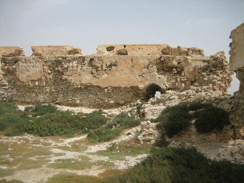 Ruines du fort - Photo 062