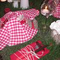 table picnic 034