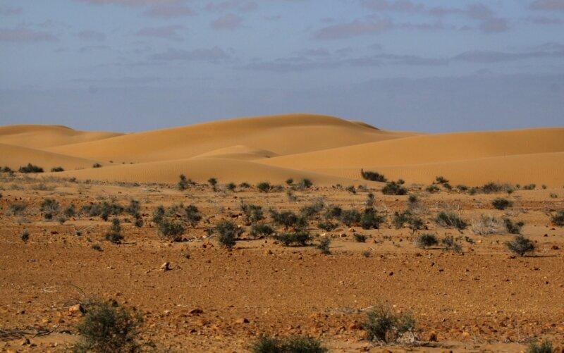 Erg de Laayoune_Maroc 2011_XRu