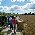 77 - 3 - ALSH JUILLET 2011 - Sorties ZigZag Parc et Pierrefonds