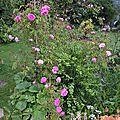 ornement des bosquets (jardin)