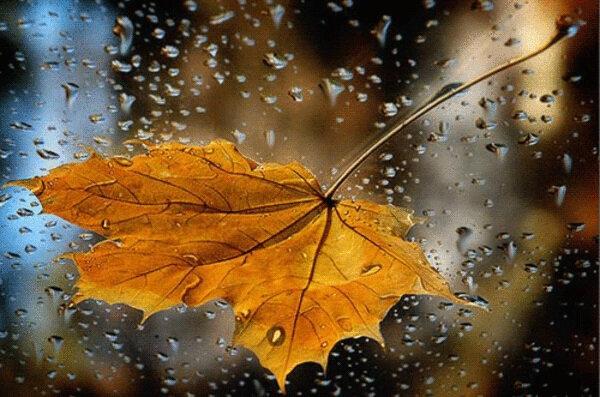 accroche make it rain ed sheeran