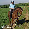 Gpc - garde et protection à cheval