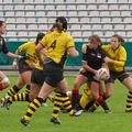 015055IMG_0081T