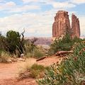 J6-Arches National Park_Park avenu_12