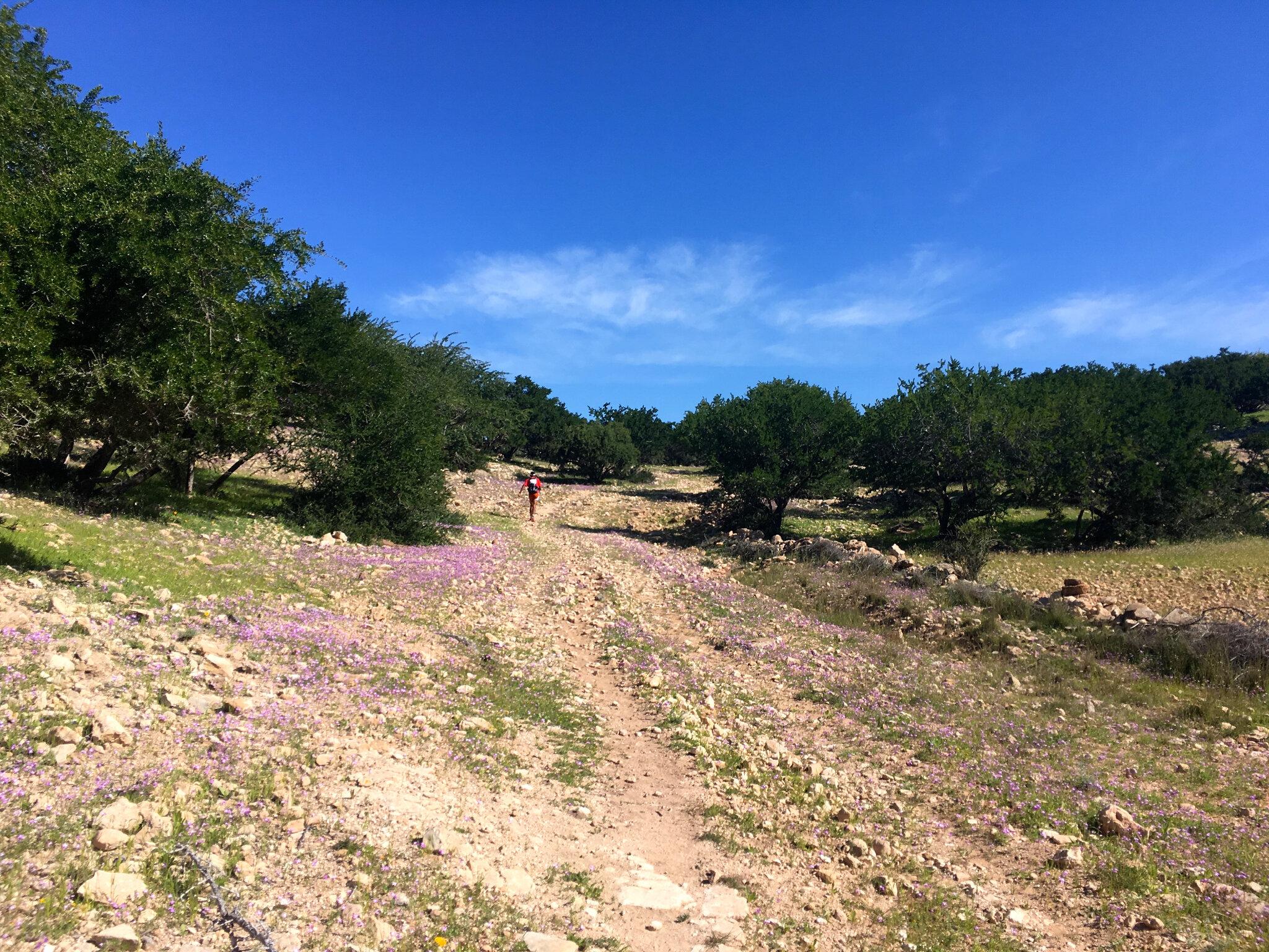 Tizi N'Trail - 3ème étape - retour à Sidi Kaouki