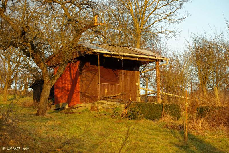 La cabane brune