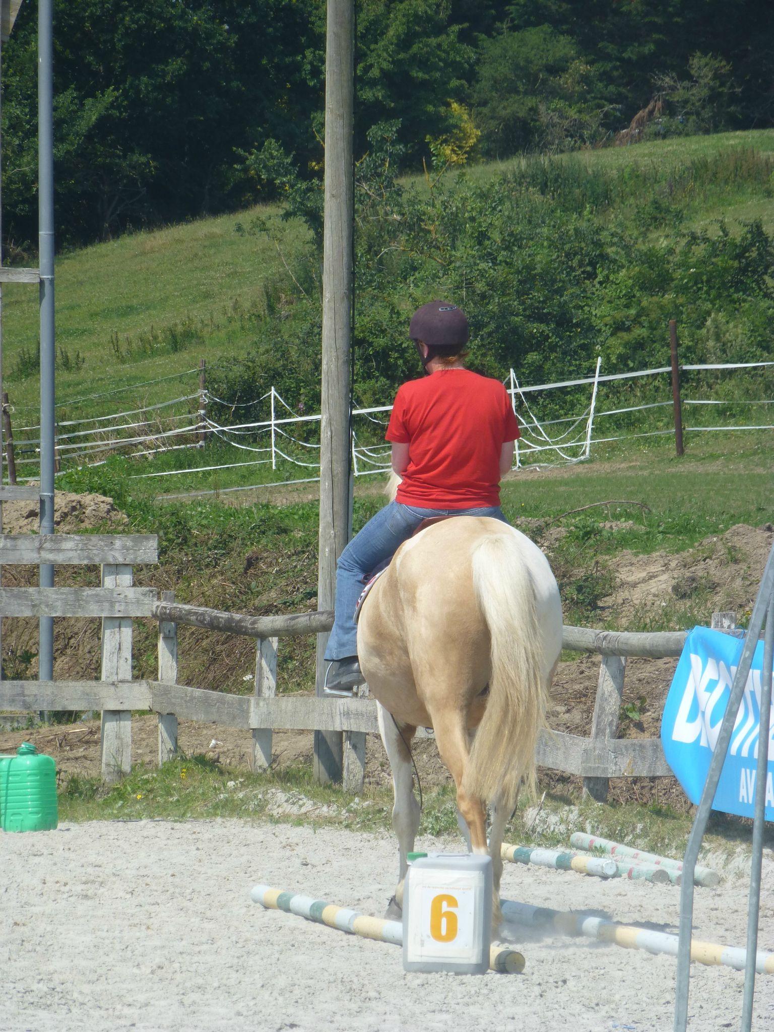 Jeux équestres manchots 2013 (247)