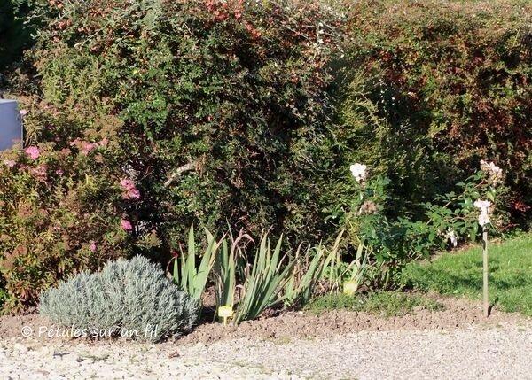 jardin14 Oct17