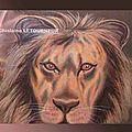 Le crépuscule des lions, documentaire de stéphane chopard