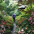 Le jardin du petit bordeaux