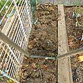 9 octobre - une envie de greliner...pour planter...