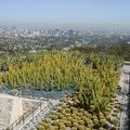 Jean paul getty museum