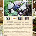 Curso elixires e cristais segundo hildegarda de bingen, frança / 20 junho 2018