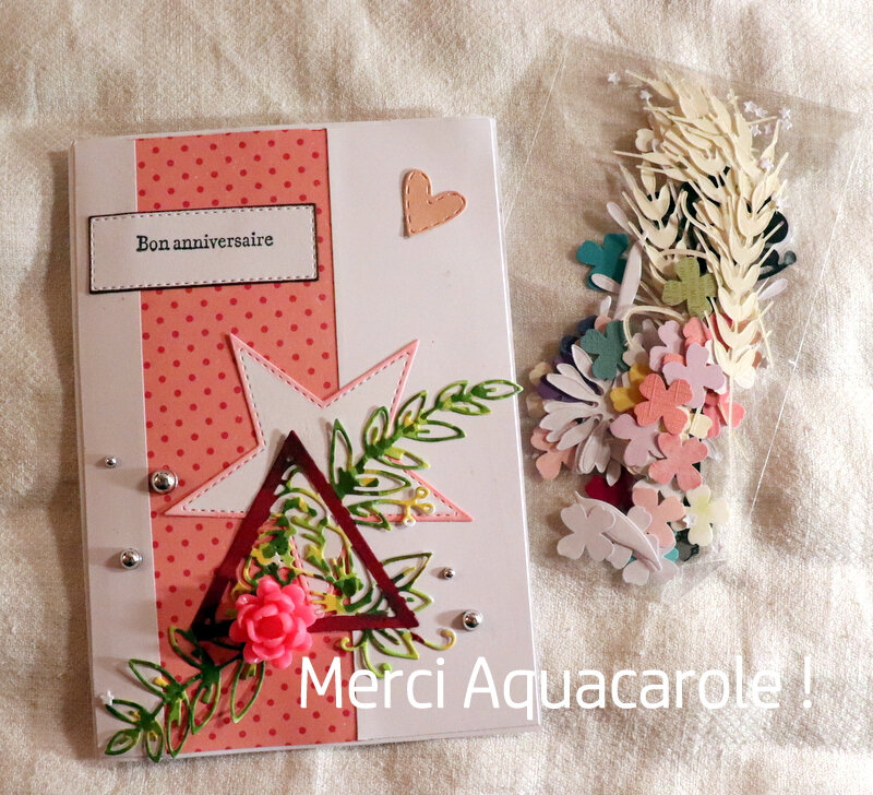 Blog - Aquacarole