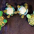 famille tortue du dessous