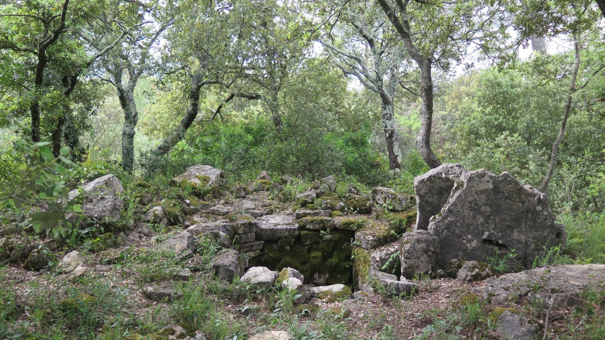Dolmen Roque d'Aille (6)