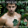 Suivez la finale de mr gay europe 2013 en direct live streaming sur internet