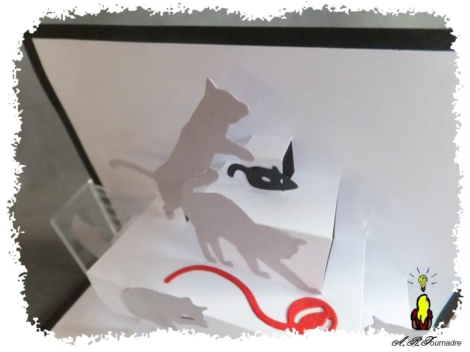 ART 2017 02 chats gris 3