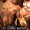 Le bébé secret de dragon, les secrets des dragons 1, jasmine wylder