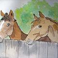 Horses - chevaux
