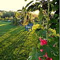 Windows-Live-Writer/Jardin_10232/DSCN0723_thumb