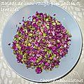 Salade de chou-rouge, lentilles et pois cassés