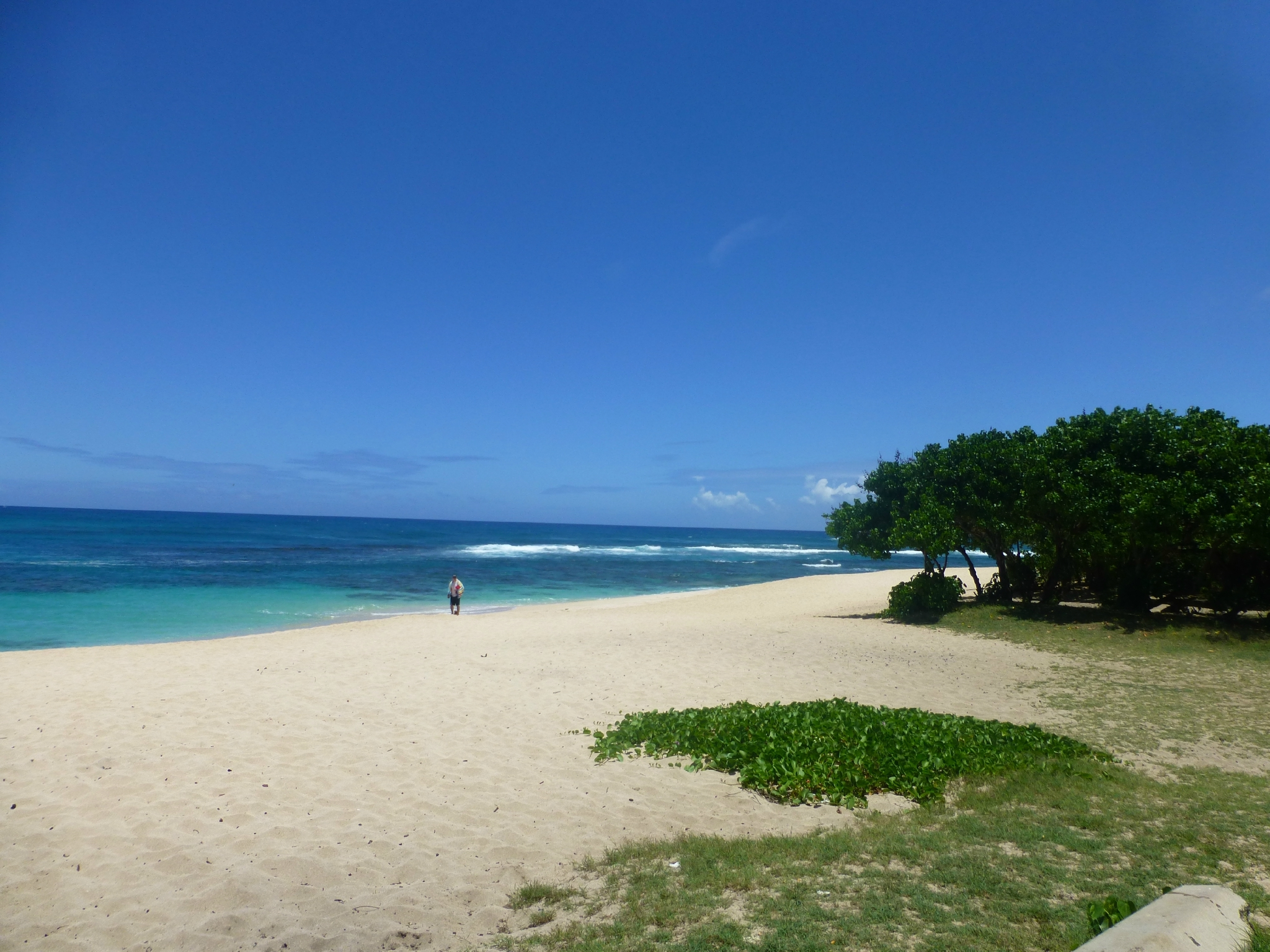 North Shore (43)