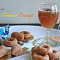 Pâte de fruits / oranges - pommes / confiserie bio