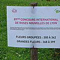 4 concours roses