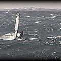 Récentes tempêtes /l'etat de la mer change !...